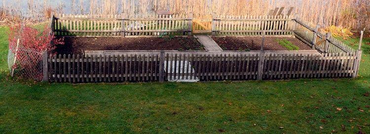 Garten - Anbau von Gemüse