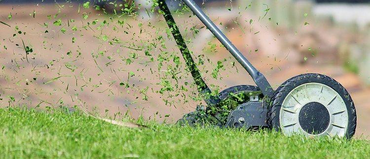 Rasen mähen vor dem Winter